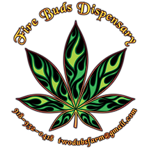 Fire Buds 2021-1.png