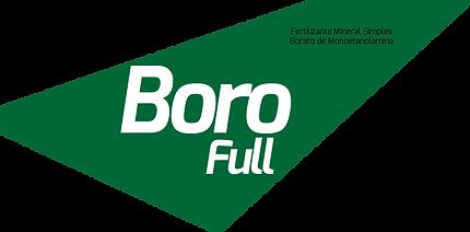 BoroFull.png