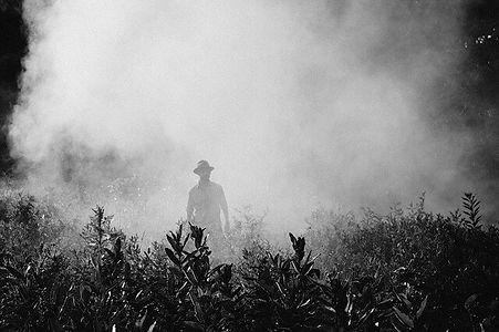 fog-918976_640 (1).jpg