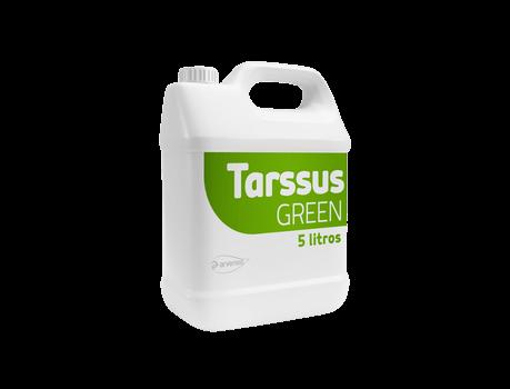 tarssus.png