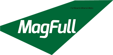 MagFull.png
