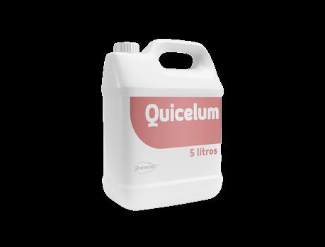 quicelum.png