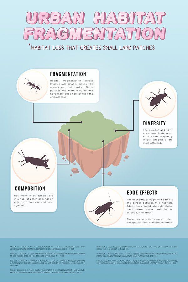 urbanecology infographic.png