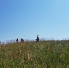 Cariveau lab field crew during peak monarch season
