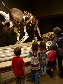 Visiting the Museum of the Rockies