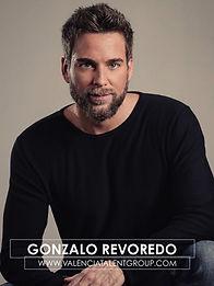 TAPA BOOK GONZALO REVOREDO.jpg