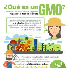 ¿Qué es un GMO_.jpg