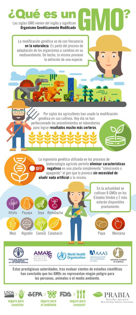 ¿Qué es un GMO?