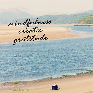 mindfulness-creates-gratitude.jpg