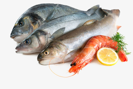 Ceará lidera valor de vendas externas de pescados no País