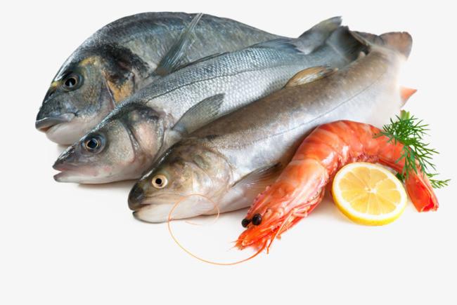 exportação peixes do ceará