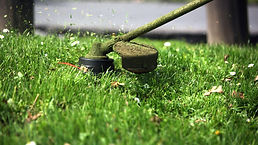Lawn Trimming Tiffin OH