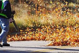 Leaf Clean-Up Tiffin OH