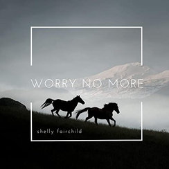     Shelly Fairchild - Worry No More     production, co-writer, guitars, bass, synths, drums, mixing