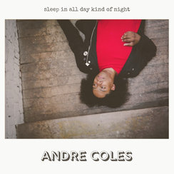    Andre Coles - Sleep In All Day     producer, mixer, guitars, bass, keyboards, synths, drums, percussion