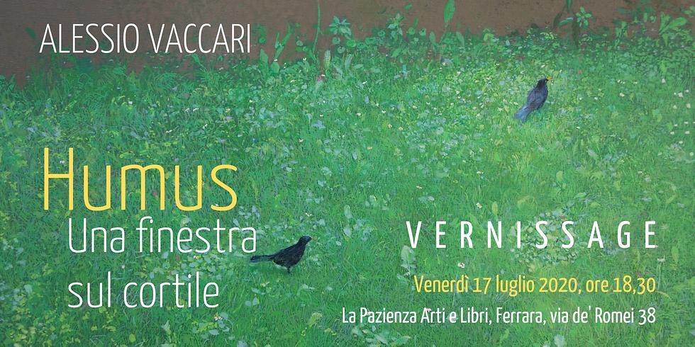 Humus. Una finestra sul cortile   mostra di Alessio Vaccari (fino al 5 settembre 2020)