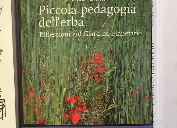 Piccola pedagogia dell'erba. Riflessioni sul giardino planetario