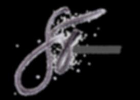 stphoto-logo.png