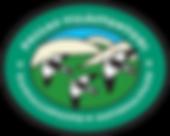 PYK logo.png