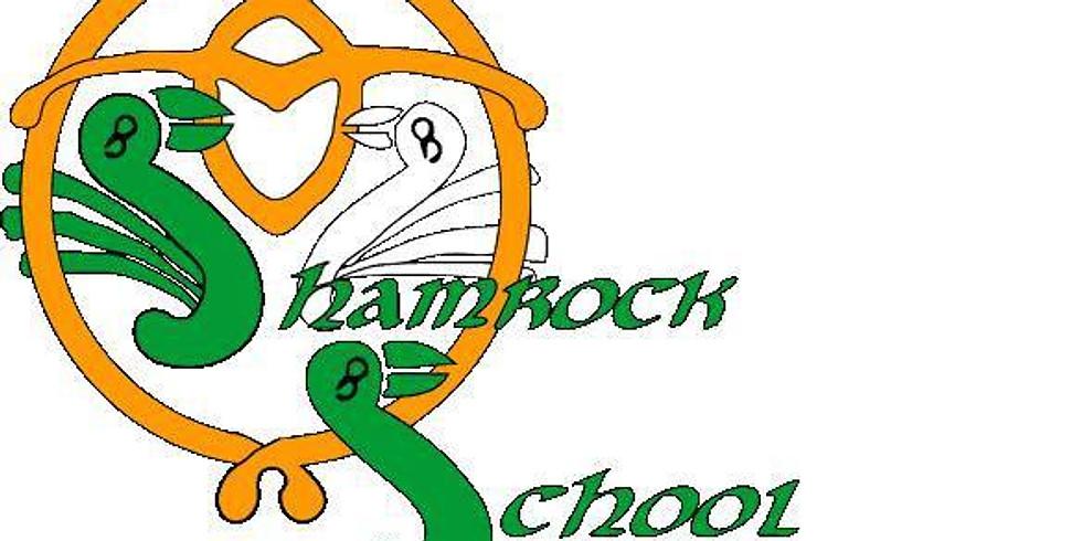Shamrock School Winter Feis