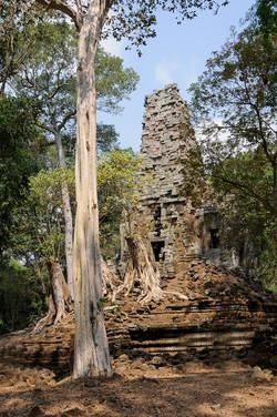 51 Angkor Wat