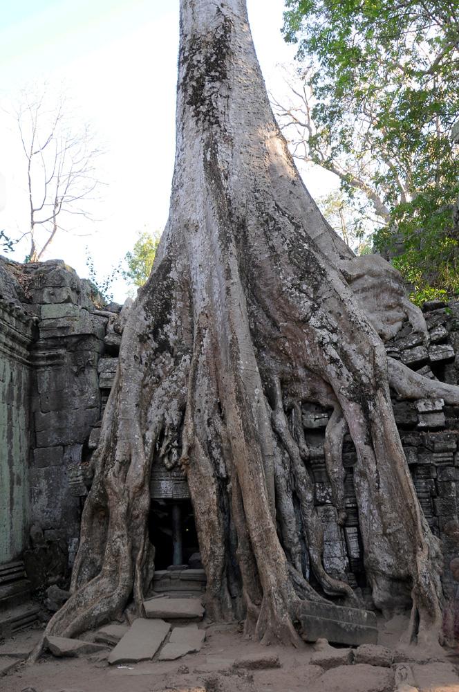 47 Angkor Wat
