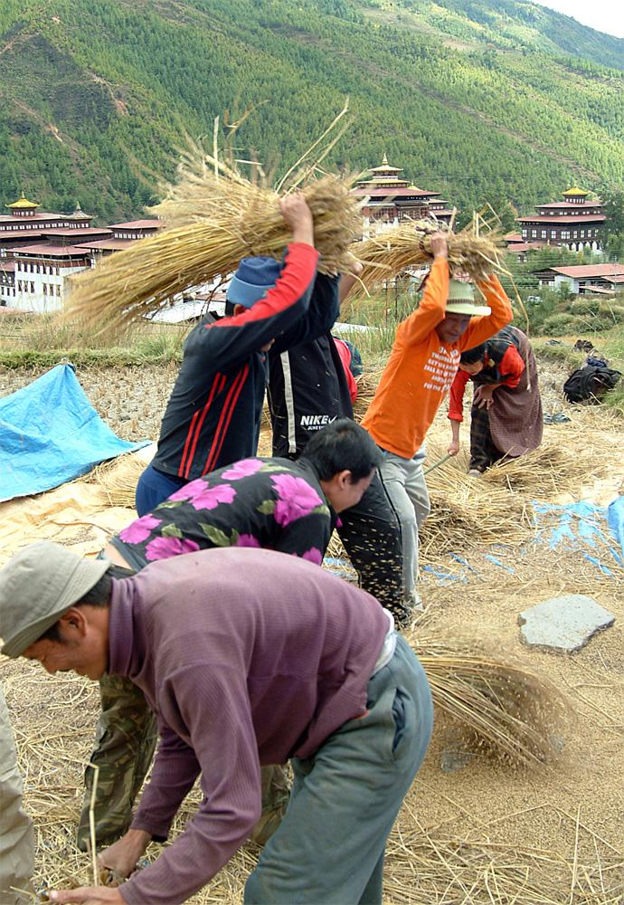 Bhutan 54
