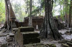 49 Angkor Wat