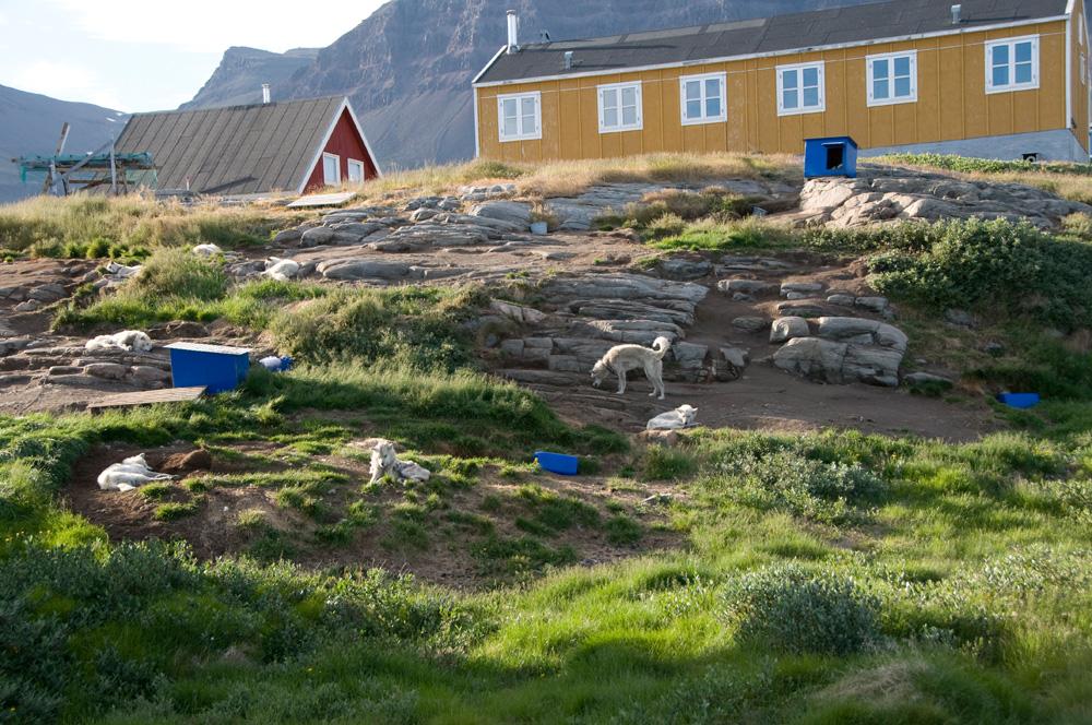 Grönland_30