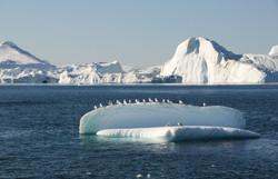 Grönland_15