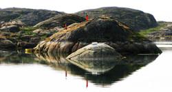 Grönland_48
