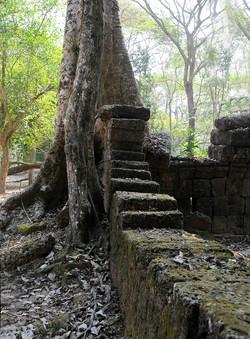 50 Angkor Wat
