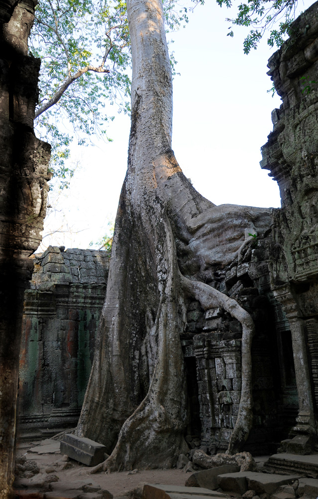 45 Angkor Wat