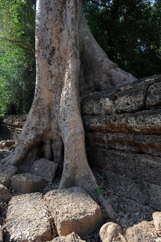 39 Angkor Wat
