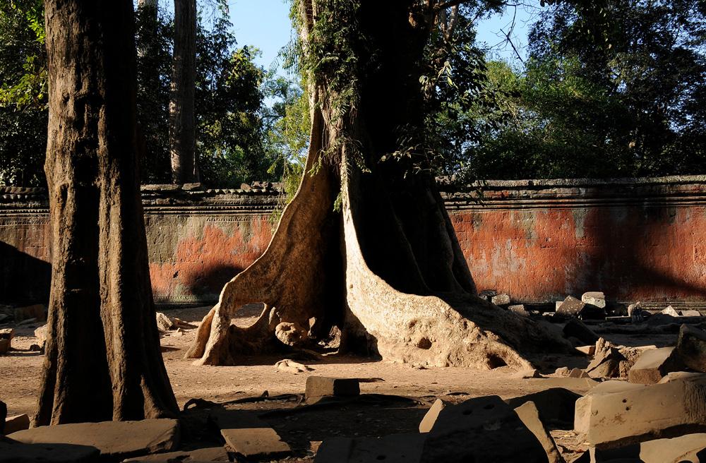 46 Angkor Wat
