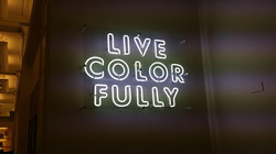 Live Colorfully Chicago on plex.jpg