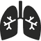 lungs-with-bronchi-_edited.png