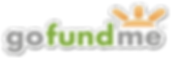 go-fund-me-logo-png-3.png