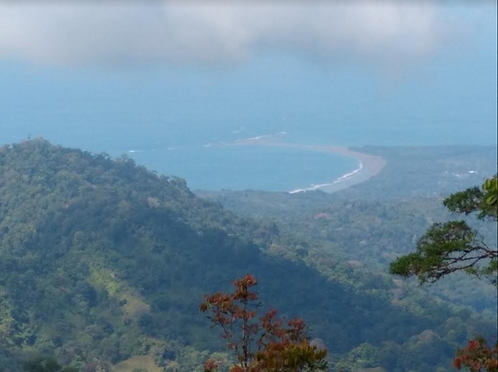 50 Hectares w/ Big Ocean View Above Uvita