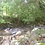 Thumbnail: 23 Hectares on River Flowing From Nauyaca