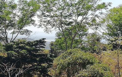 Ojochal Las Brisas Ocean View Lot