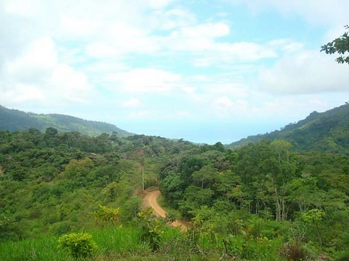 Ocean View 7.25 Acres Above Dominical