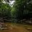 Thumbnail: 78 Acre Organic Farm & Retreat Center