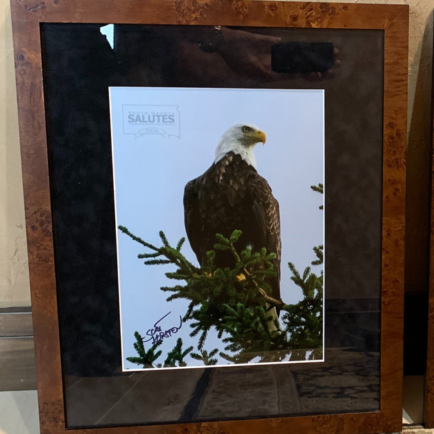 Framed Eagle Print | Donated by Marilyn & Scott Korsten