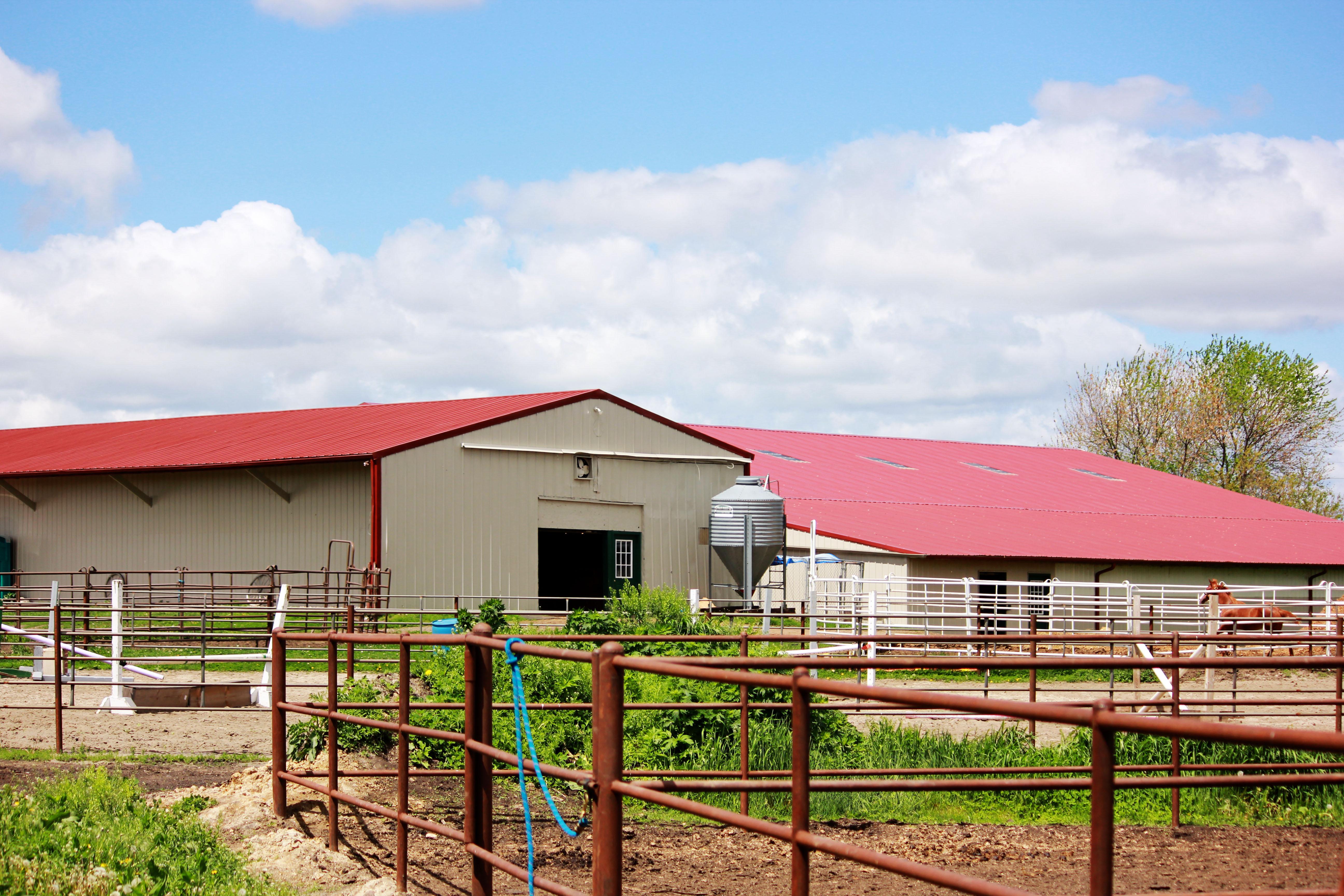 Barn 1 and 3