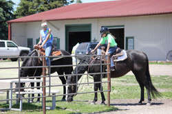 In Training | Horse Boarding