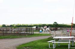 Practice | Horse Boarding