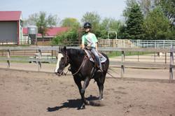Working Hard | Horse Boarding