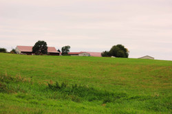 20161001 PHS Pasture in fall 2