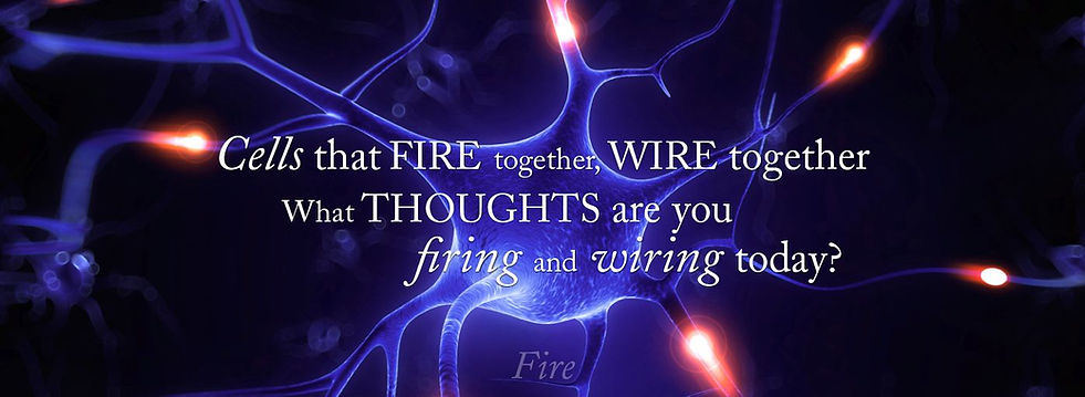 Neuroscience Cells that fire together, wire together